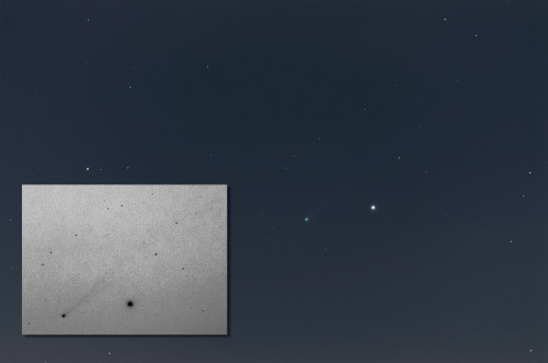 C/2012 S1 (ISON) -komeetta  Nikon D5100, 300mm/f5.6, ISO1600, pinottu 41x1,6s