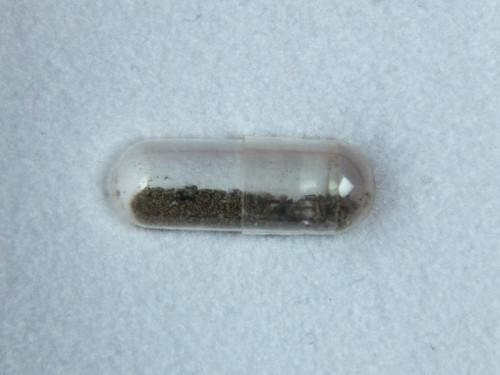 Nakhla-meteoriitin sahauspurua ja -pölyä
