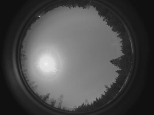 Kuun kehä, 9 asteen rengas ja 22 asteen rengas Kuva: Jari Juutilainen / Taurus Hill Observatory
