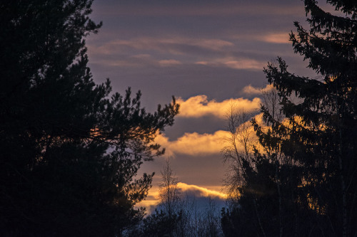 Auringon valaisemat pilvet