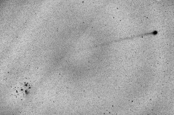 Komeetta C/2014 Q2 (Lovejoy) Väärävärikuva 85mm/f2.8, ISO1600, 52 x 4s